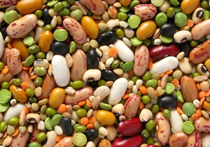 Продукты, содержащие белок животного и растительного происхождения: списки и таблица