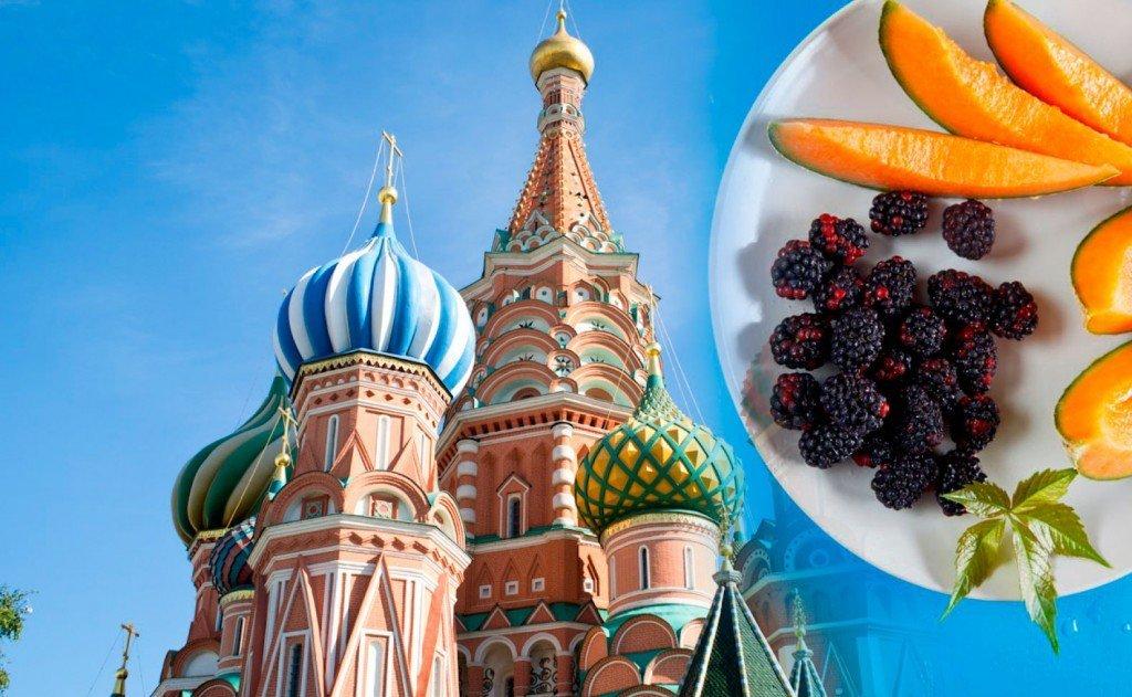 Кремлевская диета первые две недели