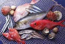 Полная таблица калорийности рыбы и морепродуктов