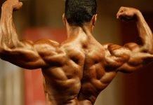 Упражнения на спину в тренажерном зале и в домашних условиях