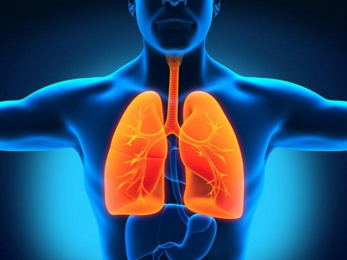 Диета при туберкулезе легких